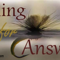 Which One Do You Look Forward To Reading? #FishingForAnswers