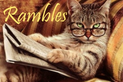 cat, kitten, reading, book, ramble, cat fun, cute, book love, bookish, animal, am reading, book nerd, fluffy, animals reading, glasses,