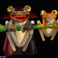Vampire Flying Frog, Yes It's Real