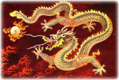 dragon, monster, scaly, creature, gold, yellow, fire, red, dragon ball, art, Asian dragon, Asian, Korean, yong,