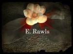 author E E Rawls, rawlse, rawls e fantasy, erawls, fantasy, flower, imagination, dream, red, white, black, adventure, epic, goodread, dark fantasy, epic fantasy, YA, Upper MG, romance, vampire, elves, faerie, fairy, dragons, goblins,