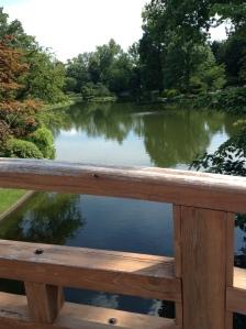 St. Louis botanical gardens, plants, rare, cool, books, author blog, writer, YA, MG, fantasy read, summer fun, adventure, travels, journey, life, Japanese, lake, pond, bridge,