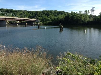 Eerie Canal, river, bridge, shop, Gem, water, green, riverside, author blog, blogger, writer, amreading, books,