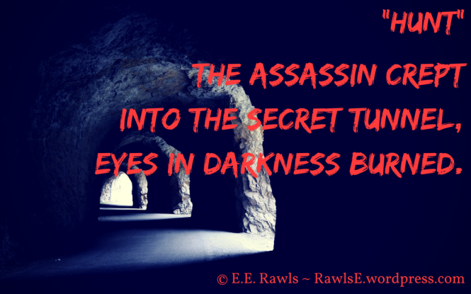 haiku, story, assassin, books, author blog, writer, reading, fantasy books, young adult books, MG books, secret, tunnel, darkness, burned, red, blue, adventure books, high fantasy series, eerawls, author elise e rawls, E.E. Rawls,