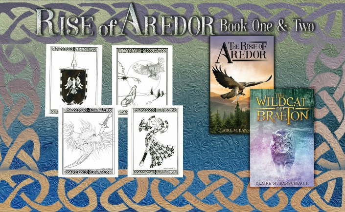 the rise of aredor, the wildcat of braeton, claire m banschbach, author, fantasy series, speculative fiction books, giveaway, free, books, art, new books, goodreads,