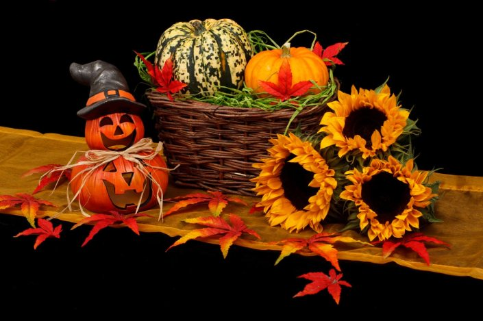 autumn, fall season, Halloween, pumpkins, witch hat, gourds, sunflowers, colorful leaves, fall leaves, maple, red, orange, yellow, green, spooky, creepy, fun, holidays,