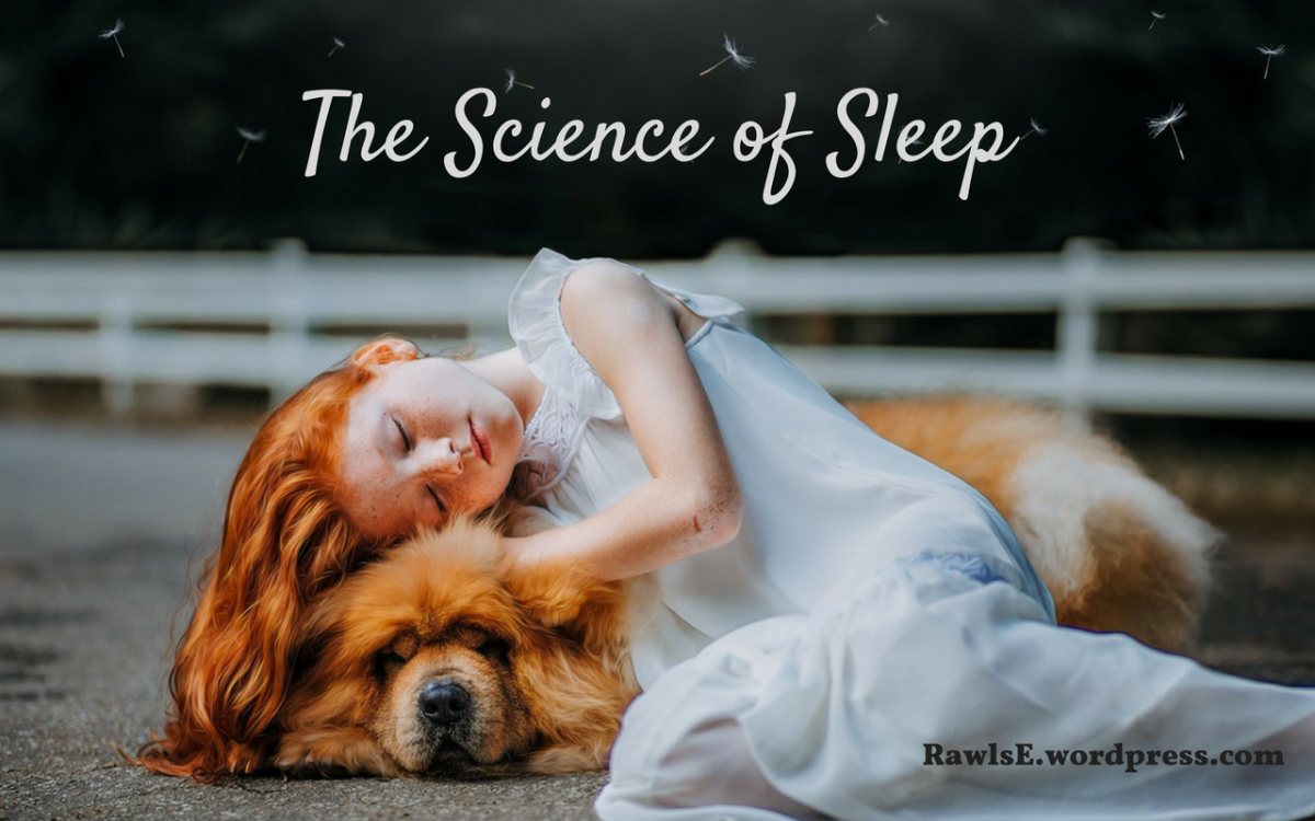 The Science Of Sleep, from the NPR Fresh Air Podcast
