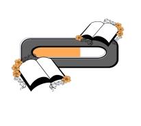 progress bars, for writers, wordpress.com widgets, progress widget, website tool, book tools, writer tools, writer help, blog tool, for bloggers, for writers,